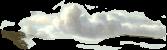 Wolken Grafik - Trance Healing - Tierkommunikation - Solido Verde - Praxis-Sonnenklang
